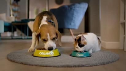 Lidl România lansează Pet Brother:primul serial online dedicat animalelor de companie