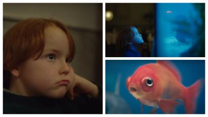 Doar curiozitatea unui copil in marea plictiseala a adultilor