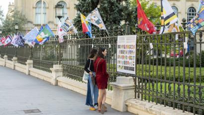 42 de designeri locali au realizat câte un steag pentru cele 42 de județe din România