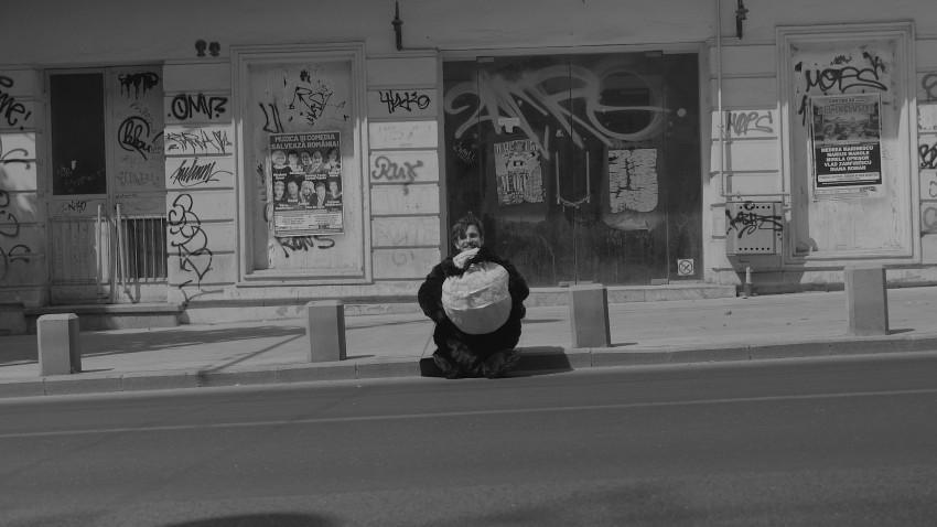 Povestea unui panda care căuta zâmbete pe străzile din București