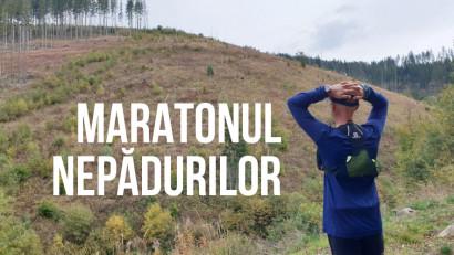 Maratonul NePădurilor: o cursă cu imagini șocante din pădurile României, organizată de Kubis și WWF