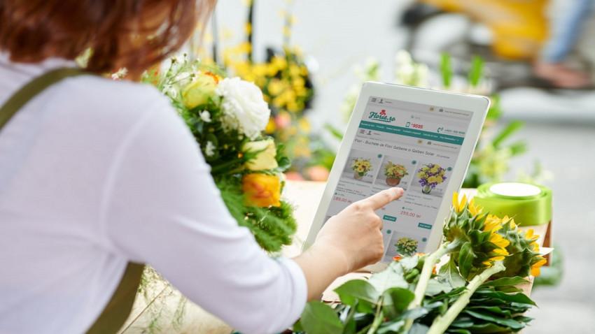 Ziua mondială a Orașelor: ce flori iubesc românii