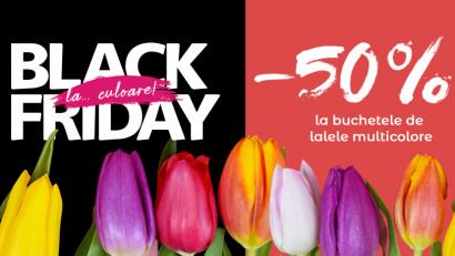 Black Friday cu mai multă culoare: 50% reducere la lalele multicolore pe Floria.ro