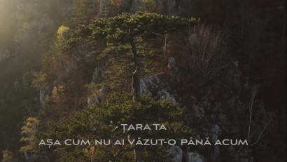 România Sălbatică prezintă primul teaser al celui mai amplu documentar dedicat naturii din țara noastră