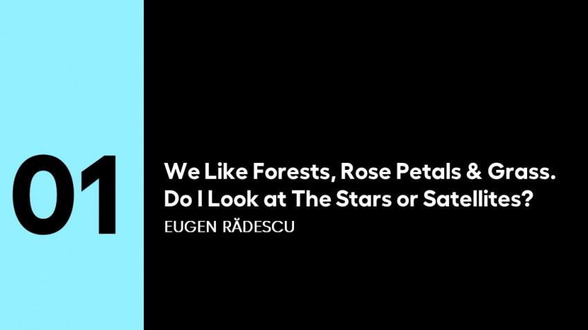 5 PENTRU ARTE | (1) Eugen Rădescu:We Like Forests, Rose Petals & Grass.Do I Look at The Stars or Satellites?