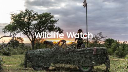 Samsung's Wildlife Watch vă invită să urmăriți animale pe cale de dispariție direct din jungla africană și să deveniți astfel paznici virtuali