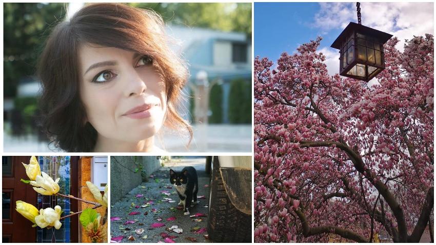 Diana Robu: Harta magnoliilor a fost în primul rând pentru mine, m-am îmbogățit cu oameni pe care nu i-aș fi cunoscut alfel, cu povești despre care n-aș fi aflat