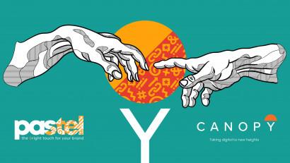 Colaborarea dintre pastel și Canopy se transformă într-un parteneriat strategic