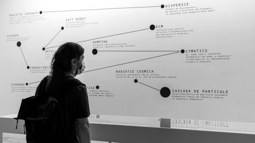 Cum a fost la rezidențele artistice Fusion AIR.Patru seri de dialoguri cu artiștii și cercetătorii