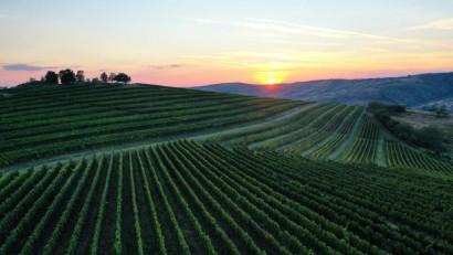Tohani România își extinde capacitatea de cazare și alocă încă 1 milion de euro pentru un nou concept de turism viticol